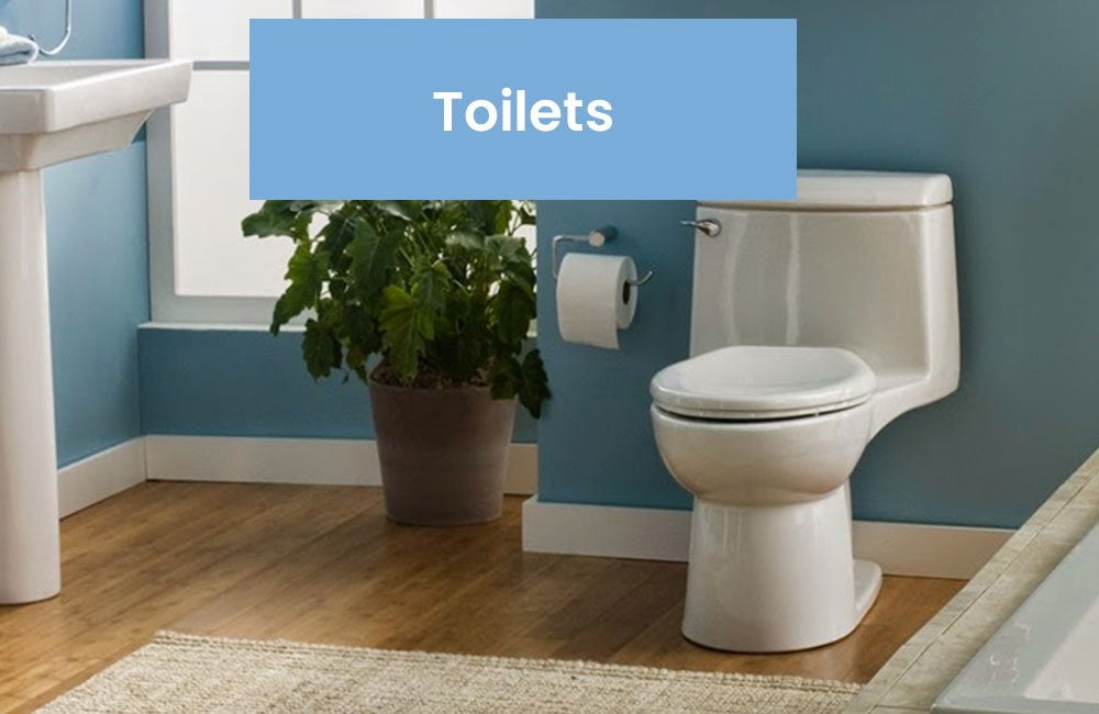 Replacement Toilet