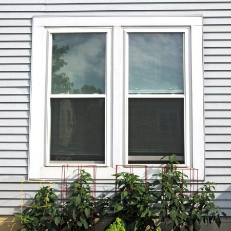 Best double-hung windows